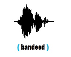 Bandeed-Crowdfunding